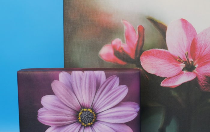 Gallery Wrapped Canvases from Duplicators